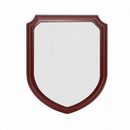 Insert for Shield Award Plaque